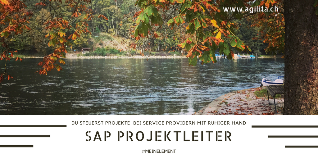Agilita ag sei in deinem element f r dein sap job for Sap junior berater jobs
